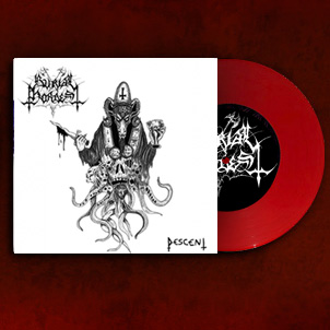 Various - Pagan Hordes Of Darkness - Pomeranian Black Metal